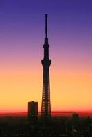 東京スカイツリー,朝 10247003526| 写真素材・ストックフォト・画像・イラスト素材|アマナイメージズ