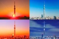 東京スカイツリーの朝昼夕夜 10247003552| 写真素材・ストックフォト・画像・イラスト素材|アマナイメージズ