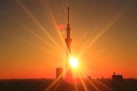 東京スカイツリーと朝日 10247003557| 写真素材・ストックフォト・画像・イラスト素材|アマナイメージズ