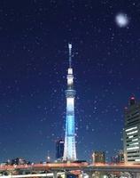 雪降る夜の東京スカイツリーのライトアップ,合成写真 10247003911| 写真素材・ストックフォト・画像・イラスト素材|アマナイメージズ
