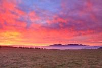 朝焼けの牧草地と八ケ岳連峰と富士山