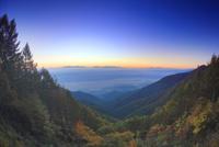 朝の雲海と八ケ岳と富士山などの山並みと紅葉の樹林