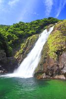 新緑の大川の滝 10247008870| 写真素材・ストックフォト・画像・イラスト素材|アマナイメージズ