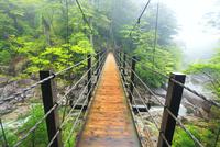 霧と荒川と吊橋,荒川橋