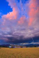 別所線の電車と稲穂実る田園と雷と夕焼け 10247009539| 写真素材・ストックフォト・画像・イラスト素材|アマナイメージズ