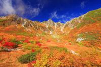 ナナカマドとダケカンバの紅葉と宝剣岳