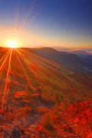 カラマツ林の紅葉と八ケ岳などの山並みと朝日