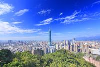 台北101などのビル群と樹林帯