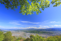 太郎山から望む上田市街と蓼科山などの山並みと新緑のカエデ 10247015225  写真素材・ストックフォト・画像・イラスト素材 アマナイメージズ