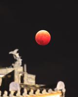 皆既月食と上田城の鯱
