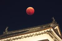 皆既月食と上田城の南櫓の鯱 10247016962| 写真素材・ストックフォト・画像・イラスト素材|アマナイメージズ