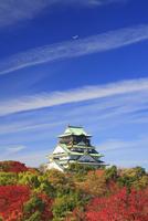 サクラなどの紅葉の大阪城と飛行機と秋空
