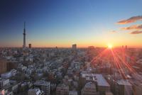 朝日と東京スカイツリーと錦糸町方向の街並 10247018564| 写真素材・ストックフォト・画像・イラスト素材|アマナイメージズ