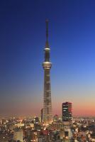 夜明けの東京スカイツリー 10247018568| 写真素材・ストックフォト・画像・イラスト素材|アマナイメージズ