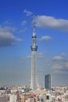 東京スカイツリー 10247018570| 写真素材・ストックフォト・画像・イラスト素材|アマナイメージズ