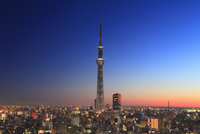 夜明けの東京スカイツリー 10247018571| 写真素材・ストックフォト・画像・イラスト素材|アマナイメージズ