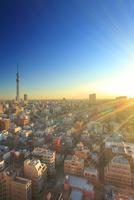 東京スカイツリーと錦糸町方向の街並と朝日の光芒 10247018581| 写真素材・ストックフォト・画像・イラスト素材|アマナイメージズ