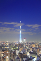 東京スカイツリーのライトアップ 10247018585| 写真素材・ストックフォト・画像・イラスト素材|アマナイメージズ