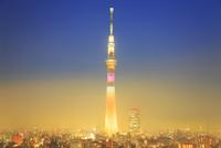 東京スカイツリーのライトアップと夜霧 10247018587| 写真素材・ストックフォト・画像・イラスト素材|アマナイメージズ