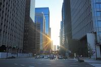 丸ノ内のビル群と反射する朝日と自動車
