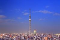 夕暮れの東京スカイツリー 10247018614| 写真素材・ストックフォト・画像・イラスト素材|アマナイメージズ