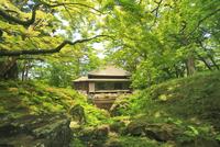 見晴公園の園亭(旧岩船氏庭園)