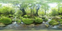 白谷雲水峡の白谷川のVRパノラマ 10247019801| 写真素材・ストックフォト・画像・イラスト素材|アマナイメージズ