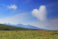 ニッコウキスゲと富士山と八ケ岳とハート型の雲