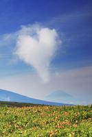 ニッコウキスゲと富士山とハート型の雲