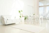 白いソファとテーブルセットと観葉植物 10248005610| 写真素材・ストックフォト・画像・イラスト素材|アマナイメージズ