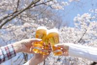 桜と生ビールで乾杯する三人の手