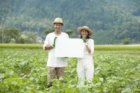 畑の中でメッセージボードを持つ20代カップル