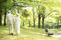 公園を散歩するシニア夫婦後姿