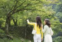 旅行先で新緑の風景を見る母と娘後姿