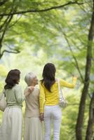 旅行先で新緑の風景を見る三世代女性後姿