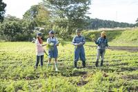 畑で人参を収穫する娘2人と両親