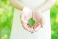 葉っぱを持つ女性の手