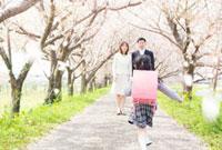 桜並木の下を走る女の子とそれを見守る両親