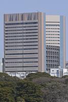 竹芝ふ頭より国立ガン研究センター中央病院を望む