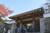 京都,紅葉,大原三千院門跡