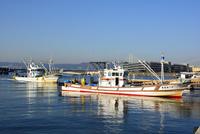 神戸 垂水漁港 イカナゴ漁船が帰る