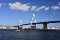 阪神高速大阪港線 10254014497| 写真素材・ストックフォト・画像・イラスト素材|アマナイメージズ