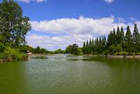 城北公園 10254014514| 写真素材・ストックフォト・画像・イラスト素材|アマナイメージズ