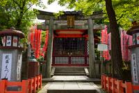 八坂神社境内の神社 10254014605| 写真素材・ストックフォト・画像・イラスト素材|アマナイメージズ