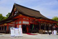 八坂神社本殿 10254014607| 写真素材・ストックフォト・画像・イラスト素材|アマナイメージズ