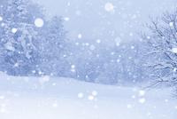 雪降る里山 10257002103| 写真素材・ストックフォト・画像・イラスト素材|アマナイメージズ