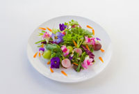 花のサラダ 10260000020| 写真素材・ストックフォト・画像・イラスト素材|アマナイメージズ