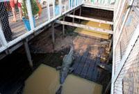 トンレサップ湖 ワニの養殖場