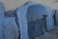 化石工場のアンモナイトなどの化石