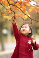 子供 10264001027| 写真素材・ストックフォト・画像・イラスト素材|アマナイメージズ